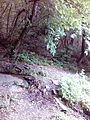 Смоларски водопад 35.jpg