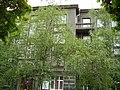 Терещенківська, 5. Червень 16.jpg