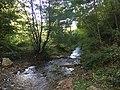 Црна Река (Осогово).jpg