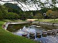 いたが せせらぎブール 2011年春 - panoramio (2).jpg