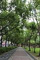 八二三紀念公園的林蔭步道.JPG