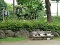 平塚の猫 - panoramio.jpg