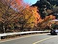 栂尾 - panoramio (1).jpg