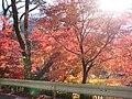 秩父もみじ街道-03 - panoramio.jpg