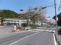 長瀬小学校跡の桜 - panoramio.jpg