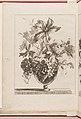 -Flowers Arranged in a Glass Vase- MET DP211761.jpg