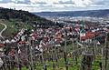 01 Neckartal, Obertürkheim und Petruskirche.jpg