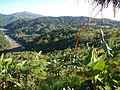 09673jfWatershed Forests San Mateo Lorenzo Hilltop Norzagaray Bulacanfvf 26.JPG