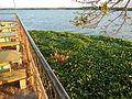 09755jfAngat River Regulatory Dam Bay Lico San Rafael Bustos Angat Bulacan villagesfvf 07.JPG
