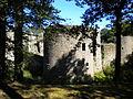 12 08-08 Château de Ranrouët 015.jpg