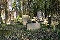 1487viki Cmentarz żydowski przy ul. Lotniczej. Foto Barbara Maliszewska.jpg