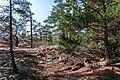 18-09-01-Schären westlich von Långbådan RRK7710.jpg