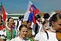 20.8.16 MFF Pisek Parade and Dancing in the Squares 048 (29048906301).jpg