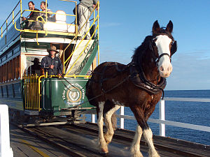 Victor Harbor Horse Drawn Tram - Image: 20040610 Victor Harbor Tramway