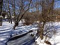 2014-01-24 11 29 02 View north along the West Branch Shabakunk Creek from the Rutledge Avenue Footbridge.JPG