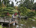2014 Seattle Japanese Garden Maple Viewing Festival (15552018052).jpg