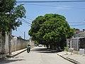 2018 Santa Marta (Colombia) - Muro trasero Escuela Superior Normal María Auxiliadora - Barrio Miraflores, calle 9 desde la carrera 16.jpg