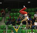 2019-06-27 1st FIG Artistic Gymnastics JWCH Men's All-around competition Subdivision 4 Horizontal bar (Martin Rulsch) 225.jpg
