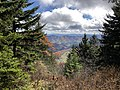 2019-10-27 12 09 59 View east-southeast through Red Spruce forest from the Whispering Spruce Trail just east of Spruce Knob in Pendleton County, West Virginia.jpg