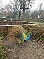 2020-12-12-Hike-to-Rheydt-Palace-and-its-surroundings.-Foto-16.jpg