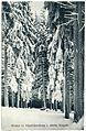 21365-Oberbärenburg-1919-im Winter-Brück & Sohn Kunstverlag.jpg