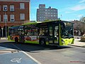 363 Tubasa - Flickr - antoniovera1.jpg