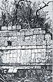 367-Bas Relief of Tigers-Chichen.jpg