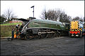 60019 Bittern Watercress Line.jpg