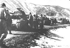 7th SS Division on Neretva 1943.jpg