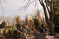 8094viki Cmentarz w Bielawie ul. Żeromskiego. Foto Barbara Maliszewska.jpg