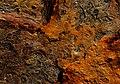 "A "" Rustic"" landscape. (14315997738).jpg"