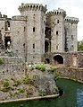 A corner of the moat at Raglan Castle - geograph.org.uk - 1531723.jpg