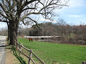 West Bridgewater, Massachusetts - A field on the Town River
