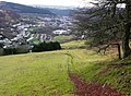 Above Cwm Tyleri - geograph.org.uk - 677972.jpg