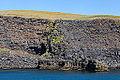 Acantilados de Heimaey, Islas Vestman, Suðurland, Islandia, 2014-08-17, DD 064.JPG