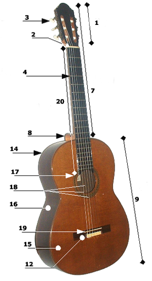 guitar anatomy of a guitar wikibooks open books for an open world rh en wikibooks org Acoustic Guitar Bridge Pins Acoustic Guitar Nut