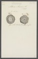 Actinia anemone - - Print - Iconographia Zoologica - Special Collections University of Amsterdam - UBAINV0274 109 05 0039.tif