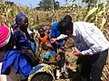 Administering vaccine on a farm in Nigeria (33874915954).jpg