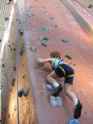 The Tom W. Davis climbing wall at the OSU Adve...