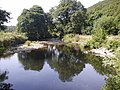 Afon Nyfer from the footpath - geograph.org.uk - 911328.jpg