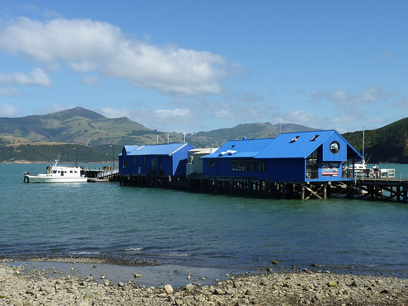 File:Akaroa, South Island, New Zealand (3).JPG