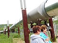 Alaska Pipeline, 2016 (216).jpg