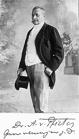 Albert von Pfister