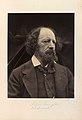 Alfred Tennyson by Julia Margaret Cameron.jpg