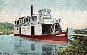 Alligator at Leesburg, Florida (1906 configuration)