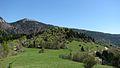 Alpage au sommet du Florimont.jpg