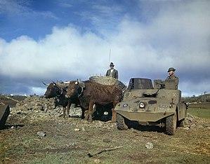 Morris Light Reconnaissance Car - RAF Morris LRC on an airfield in the Azores, January 1944.