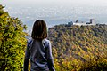 Andro Galinovic - Overlooking Medvedgrad.jpg
