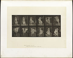 Animal locomotion. Plate 188 (Boston Public Library).jpg