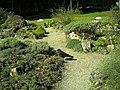 April - Spring Botanischer Garten Freiburg - 2016 - panoramio (12).jpg